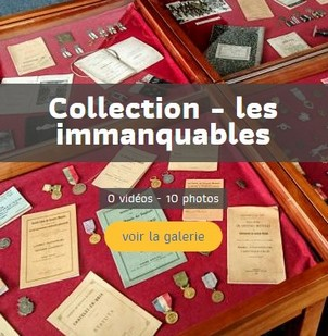 Les immanquables de la collection